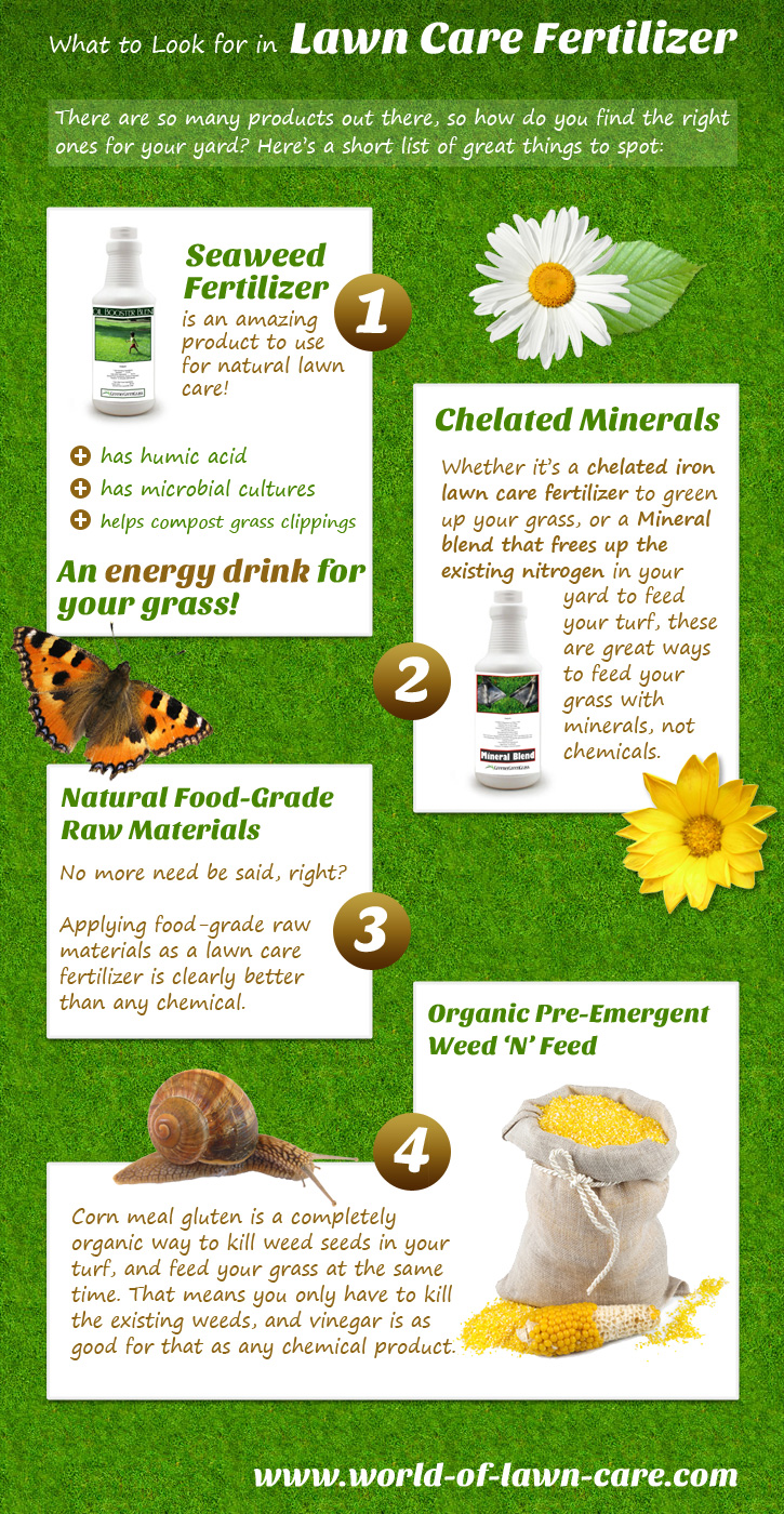 A Pinterest graphic on lawn fertilizers for World of Lawn Care